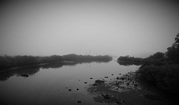 Low Tide by Phil Penne