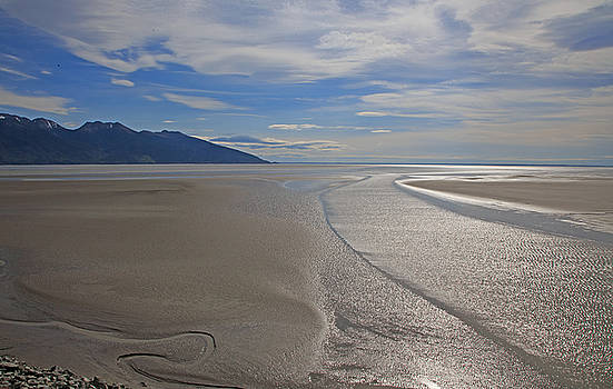 Allan Levin - Low Tide As Seen From The Alaska Railroad