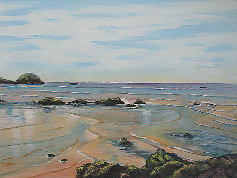Low tide-Shelly Beach by Murray McLeod