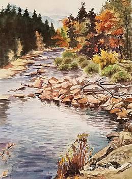 Low water fall by Rose Wang