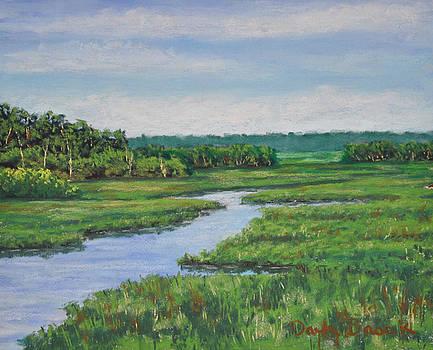 Lowcountry Marsh by Darla Brock