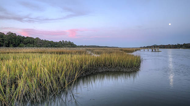Lowcountry Marsh Grass on the Bohicket by Dustin K Ryan