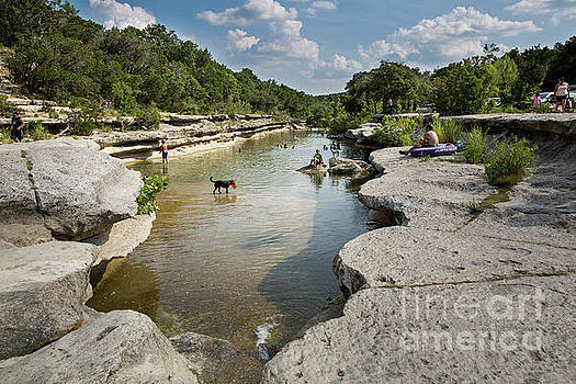 Herronstock Prints - Lower Bull Creek Greenbelt swimming hole is a swimmers paradise on a sweltering summer day in Austin, Texas