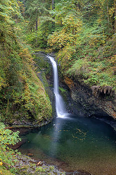 Lower Butte Creek Falls Plunging into a Pool by David Gn