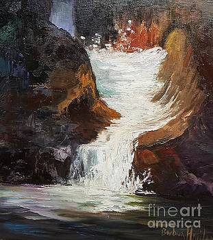 Lower Chasm Waterfall by Barbara Haviland