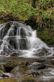R J Ruppenthal - Lower Christie Falls