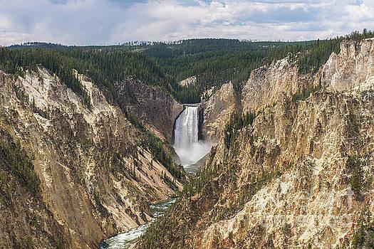 Lower Falls of the Yellowstone by Jason Kolenda