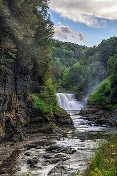 Lower Falls - Summer by Mark Papke