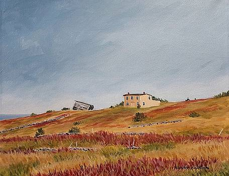 Lower Island Cove - Conception Bay  by Randy Blundon