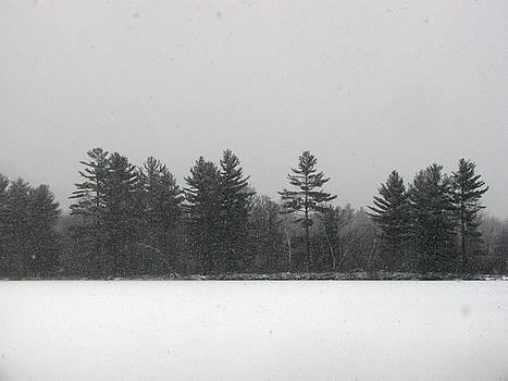 Lower lake in winter by Ken Moran