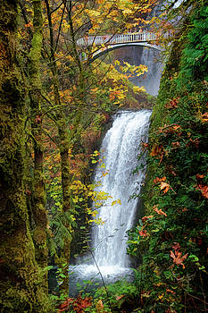 Lower Multnomah Falls by Wes and Dotty Weber