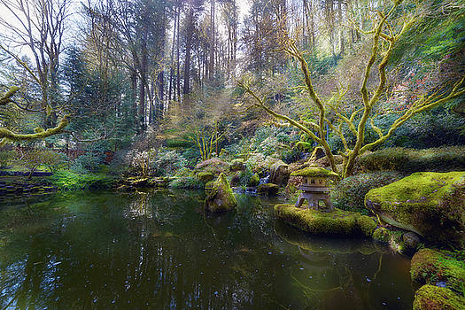 Lower Pond at Portland Japanese Garden by David Gn
