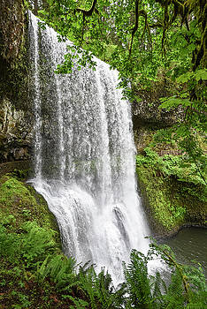 Lower South Falls I by Greg Vaughn