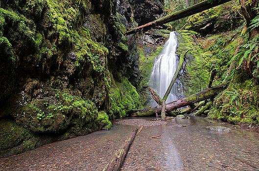 Margaret Pitcher - Lower Trestle Creek Falls