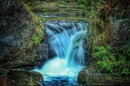Lower Whatcom Falls by Brad Walters