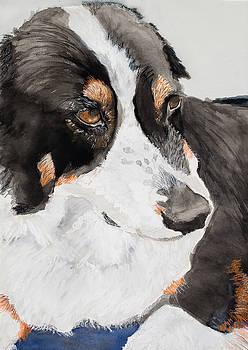 Loyal Companion by Marcella Morse