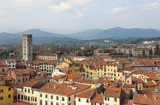 Lucca Aerial panoramic view with Piazza dell' Anfiteatro by Kiril Stanchev