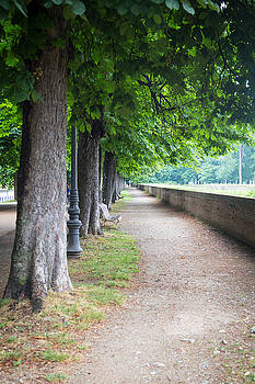 Lucca, Italy by Amanda Adkisson