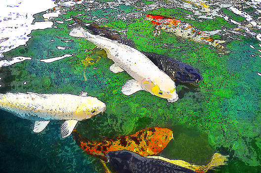 Lucky Fish by Karen Tullo