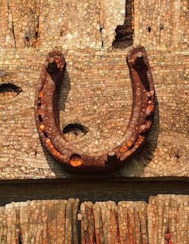 Lucky Horseshoe by Jack Zulli