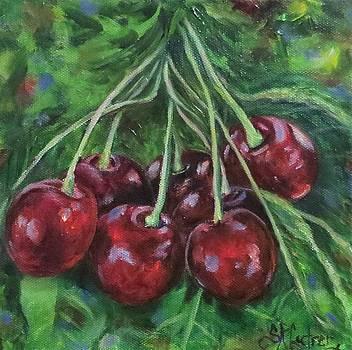 Lucky Seven, Cherries Tart and Sweet by Sandra Cutrer