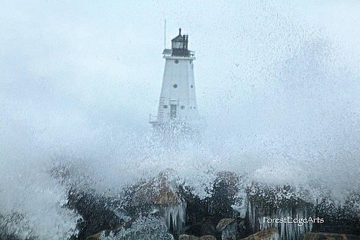 Ludington Lighthouse January 2017 by Dick Bourgault