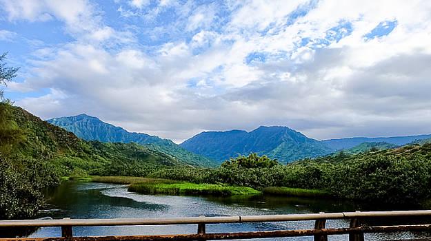 Lumahai River, Kauai by Cheryl Lynn Johnson