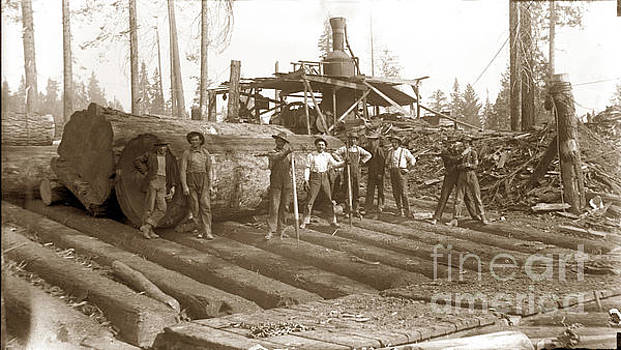 California Views Mr Pat Hathaway Archives - lumberjack with Redwood logs and steam donkey circa 1900