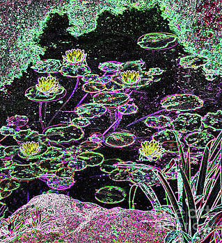 Sharon Williams Eng - Luminescense