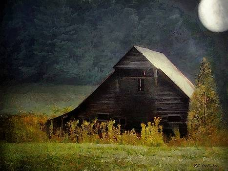 Luminous Night in the Pinelands by RC deWinter