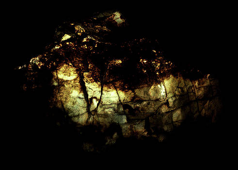 Luminous by Rachel Christine Nowicki