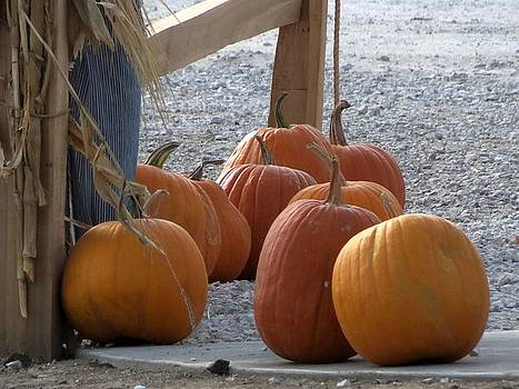 Kyle West - Lumpy Pumpkins