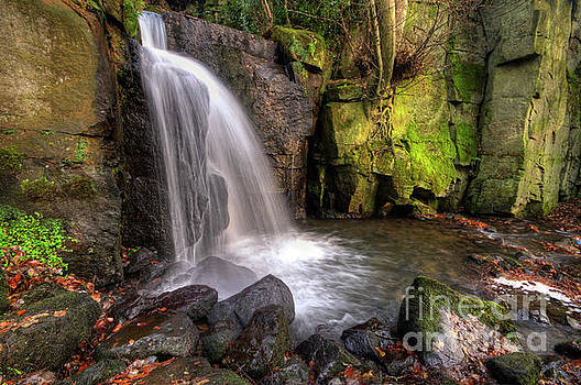 Yhun Suarez - Lumsdale Falls 3.0