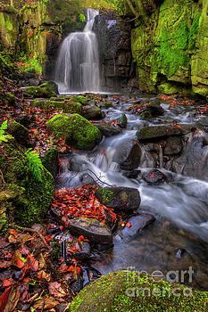 Yhun Suarez - Lumsdale Falls 4.0
