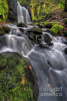 Yhun Suarez - Lumsdale Falls 5.0