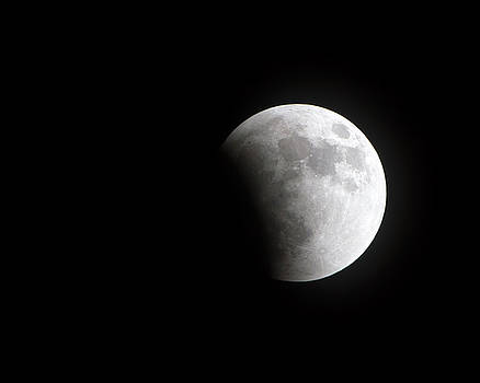 Lunar Eclipse Phase One by Mark Andrew Thomas
