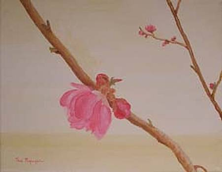 Lunar New Year Peach Flowers by Thi Nguyen