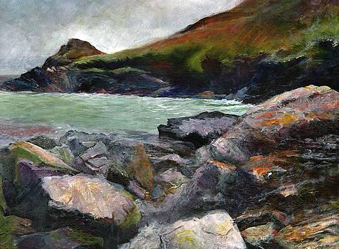 Lundy Bay by John Tregembo