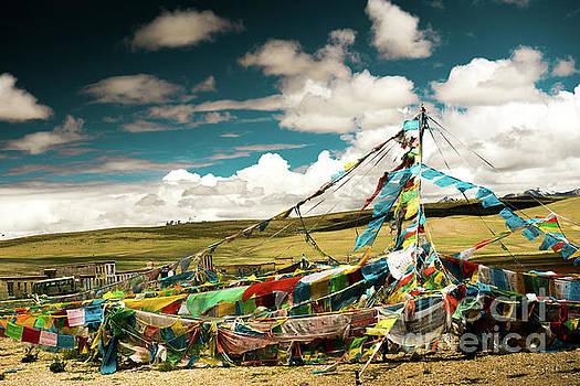 Lungta near Lake Manasarovar Kailash Yantra.lv TIBET by Raimond Klavins