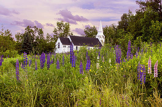 Lupine Field Sunset With Chapel by Donna Doherty