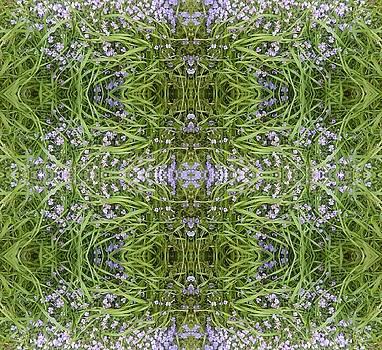 Luscious Blue Flower Grass Mandala by Julia Woodman