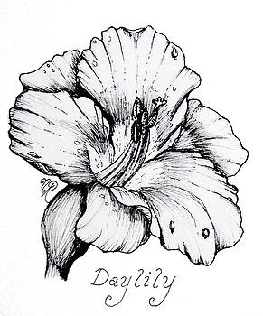 Luscious Daylily  by Nicole Angell