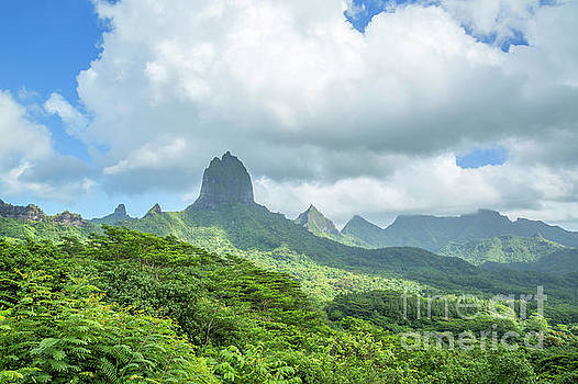 Lush mountains surrounding Opunohu Bay in Moorea, French Polynes by Julia Hiebaum