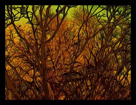 Lux Splendor by Inga Vereshchagina