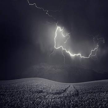 Luz by Luis  Beltran