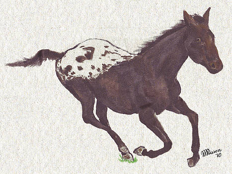 Lyl's Appaloosa Horse by Jean-Marie Poisson
