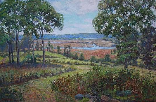 Lyme Marsh by Roseann Berluti
