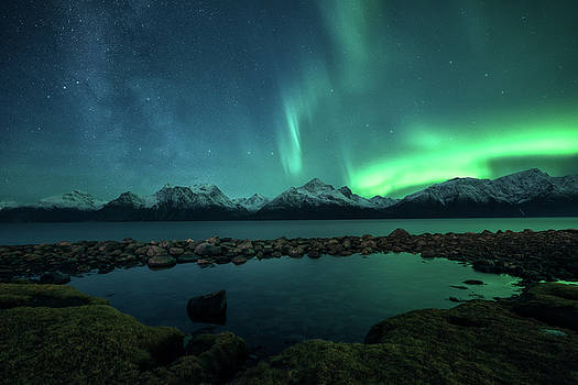 Lyngsalpan by Tor-Ivar Naess