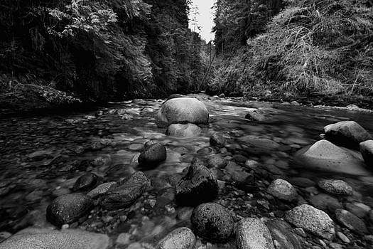 Lynn Canyon Creek by Colin Sands