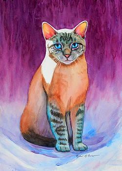 Lynx Point Siamese Cat by Rachel Armington